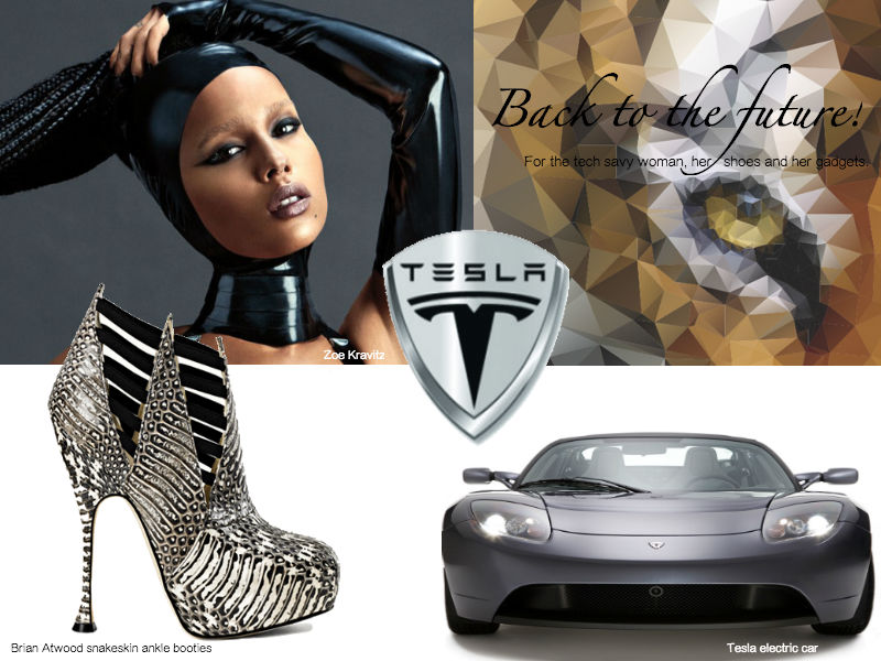 Brian Atwood Tesla Lux Afrique