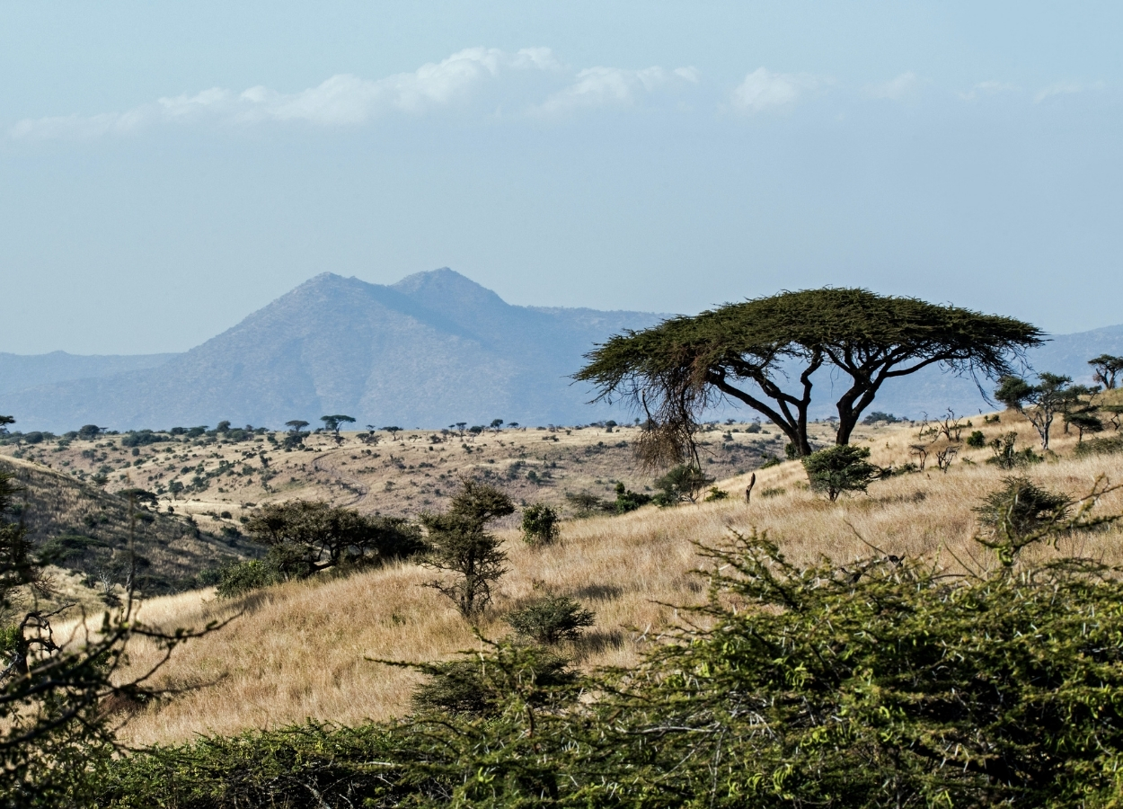 Top 4 African safari excursions on a private jet